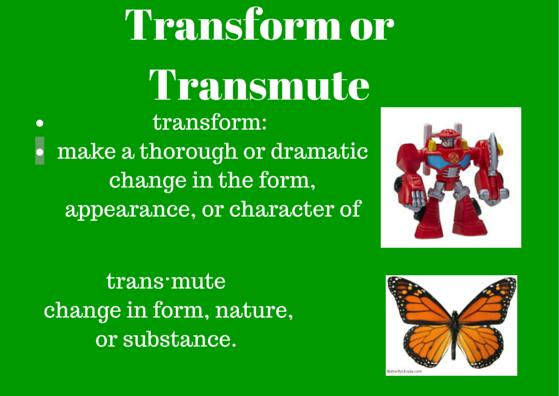 transform.transmute